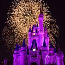 Fireworks at Disneyworld